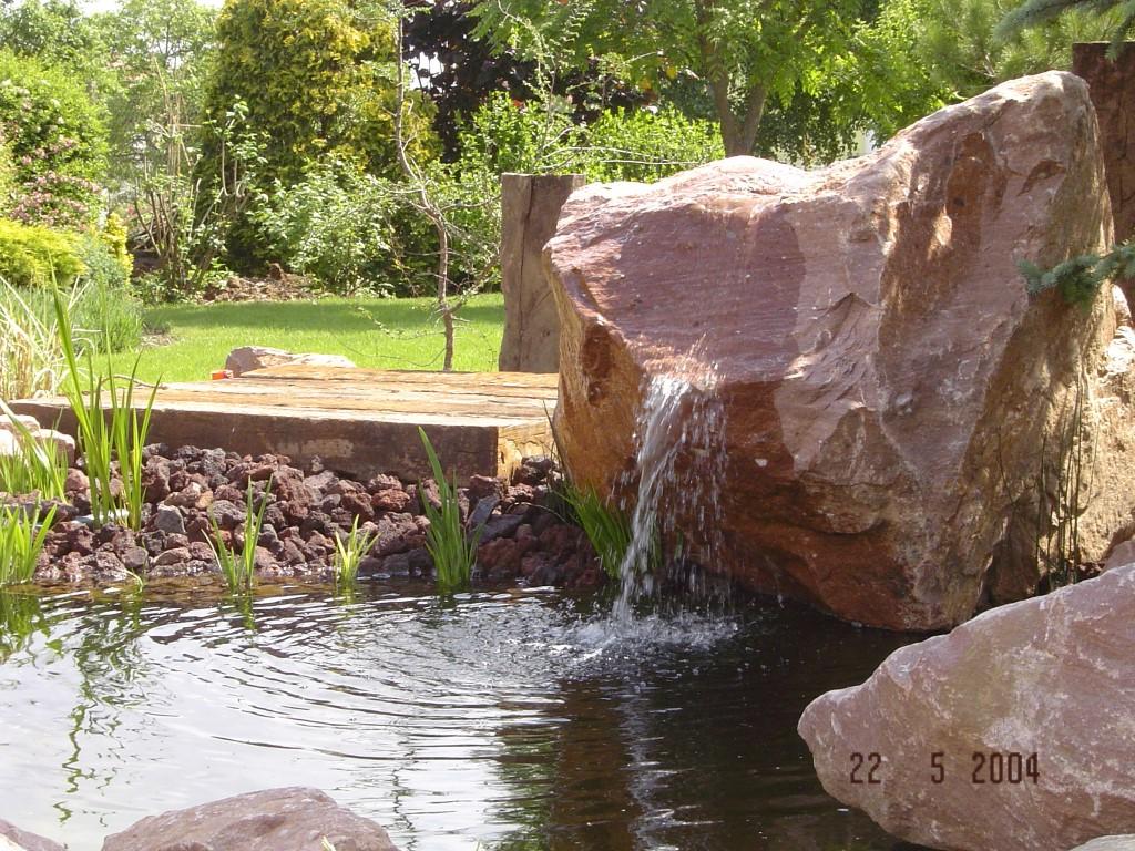 Aménagement aquatique, bassin combier paysage 71